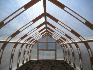 hoophouse inside view