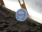 thermometer inside hoophouse